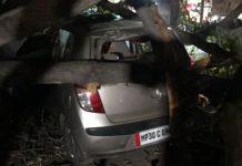 heavy-wind-waves-tree-fall-on-cars-in-gwalior