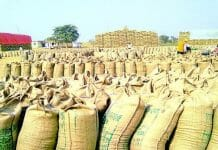 Conflicts-between-the-Center-and-the-State-on-160-rupees-Incentives-on-wheat---