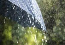 light-rain-in-these-district-of-madhya-pradesh