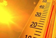 advisory-for-protection-from-heat-wave-in-madhya-pradesh