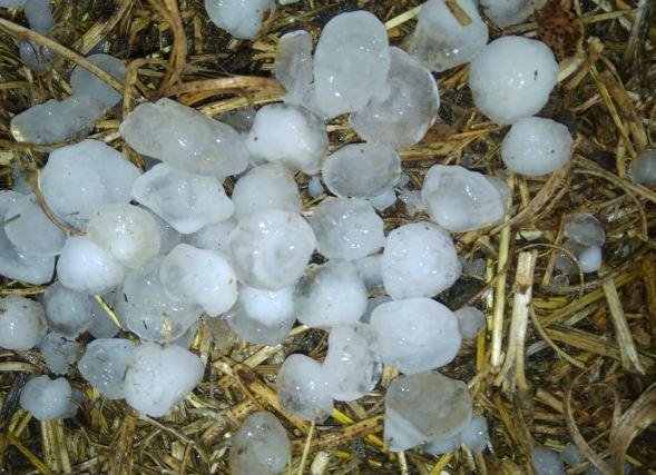 hailstone-in-gwalior-