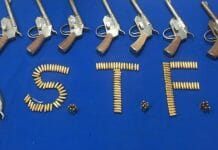 weapons-smuggler-arrested-by-gwalior-stf-