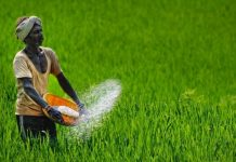 Farm-Loan-Waiver-Scheme-Co-op-bodies-to-get-no-dues-certificates-