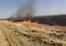 collector-ban-on-burning-in-farms-in-ashoknagar