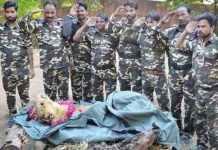 oldest-lioness-of-the-madhya-pradesh-rani-died-in-gwalior-