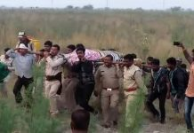 after-ten-days-tiger-caught-by-forest-team-in-betul-district-