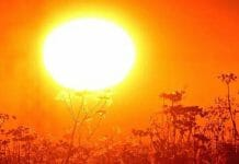 heat-wave-continues-in-madhya-pradesh