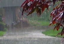weather-update-of-madhya-pradesh-rain-stop-