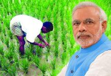 80-lakh-farmer-of-the-mp-will-get-the-benefit-of-the-pm-Kisan-samman-nidhi-Yojana