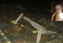 child-died-due-to-storm-impact-hammock-fly-in-storm-in-barwani