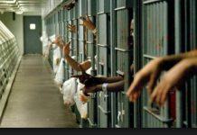 -186-prisoners-will-be-free-in-Madhya-Pradesh-on-Independence-Day