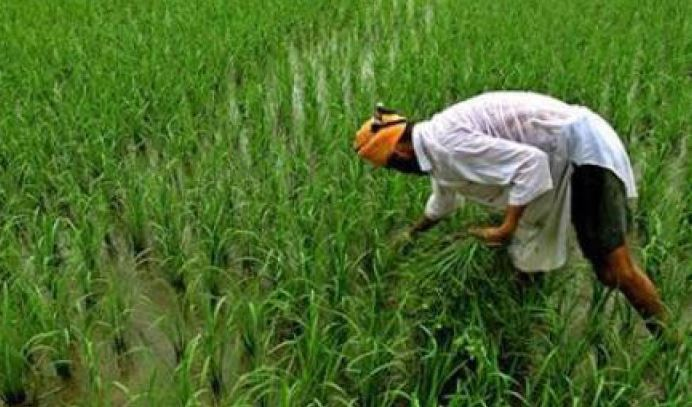 Bhopal--Farm-loan-waiver-not-resumed-despite-EC's-approval
