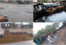 weather-storm-rain-and-hail-and-14-people-died--in-madhya-pradesh-
