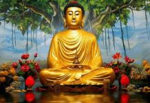 birth-anniversary-of-Lord-Buddha-will-be-celebrated-in-rare-yoga-on-18th-may