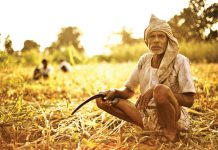 MP--Farmers-do-not-want-'debt-waiver'-here