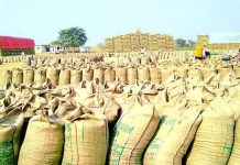 Registration-for-wheat-purchase-at-minimum-support-price-on-21-january