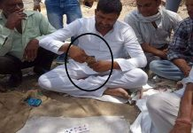 kala-peepal-mla-picture-viral-on-social-media-holding-cards-in-hand-MP