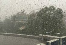 weather-department-said-shower-in-some-place-of-mp