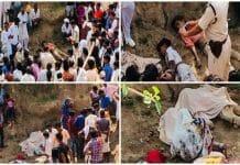 illegal-mining-four-dead-in-shivpuri