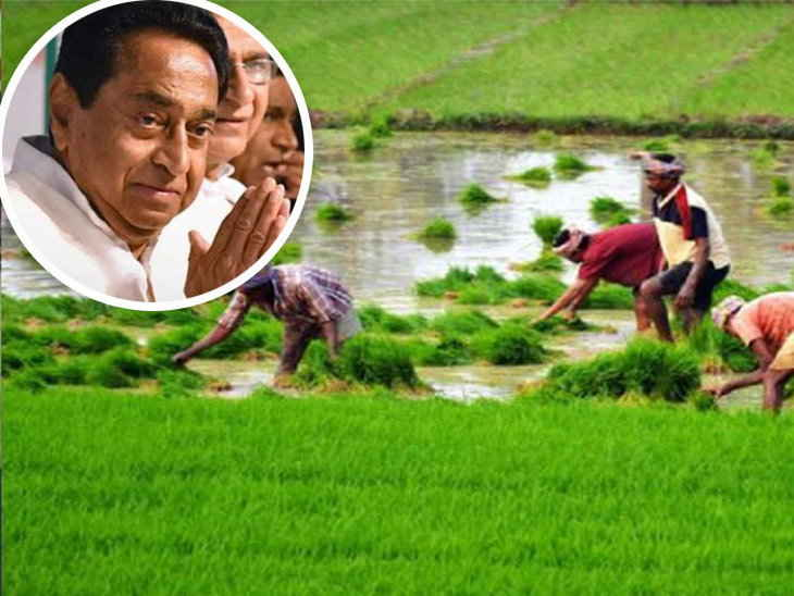 Kamal-Nath-government-will-give-another-gift-to-farmers-after-'debt-waiver'