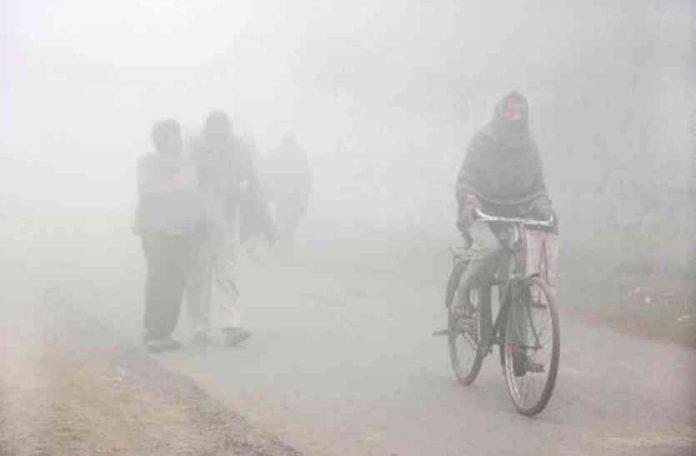 coldest-day-of-the-season-gwalior-witnesses-longest-spell-of-mercury-below-3-6-degrees-in-last-12-years