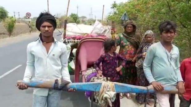 मजबूर हुआ मजदूर: बैलगाड़ी में खुद जुत गए, मंत्री बोले- 'हर स्तर पर मदद करेगी सरकार'