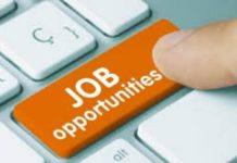 Government Jobs Alert