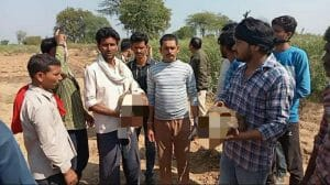 Datia News :जहरीला कीटनाशक खाने से 7 मोरों की मौत, वन विभाग में मचा हड़कंप