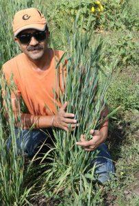 इंदौर के आग्रेनिक एक्सपो मेले में सजेंगे खरगोन की जैविक फसलों के स्टॉल