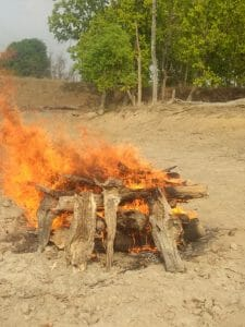 बांधवगढ़ टाइगर रिजर्व में मादा तेंदुआ की मौत, भूख से मरने की जताई जा रही आशंका