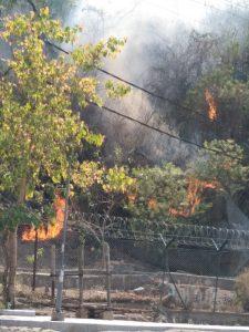 जबलपुर : मदन महल की पहाड़ी पर लगी भीषण आग, लाखों के पौधे जलकर हुए खाक