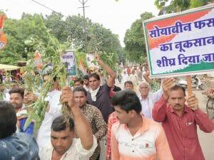 सोयाबीन की खराब हुई फसलों को लेकर देवास में कांग्रेस ने निकाली रैली, कलेक्टर कार्यालय पर हंगामा कर सौंपा ज्ञापन